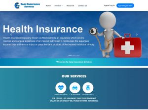 Easy Insurance Services